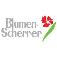 Blumen A. Scherrer